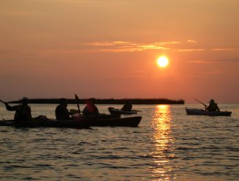 Corolla Salt Marsh Sunset Tour