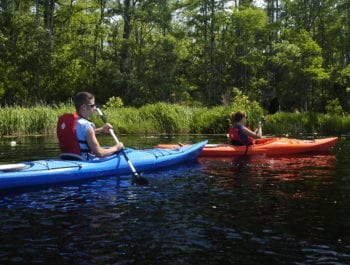 Blue and orange kayak on Alligator River Tour in the Outer Banks