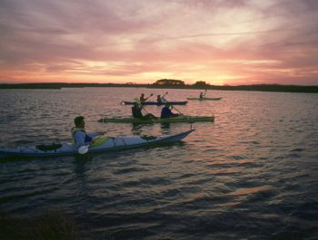 Bodie Island Bioluminescence Night Kayak Tour