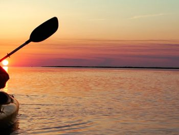 Outer Banks Kayak Tours