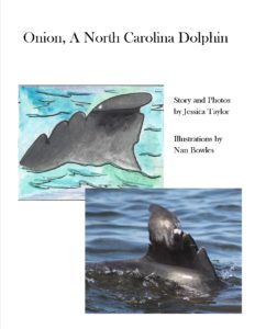 onion book - Outer Banks Center for Dolphin Research
