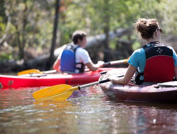 Virginia Beach Kayak Tours