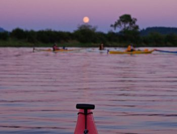 Nighttime Bioluminescence & Full Moon Kayak Tours